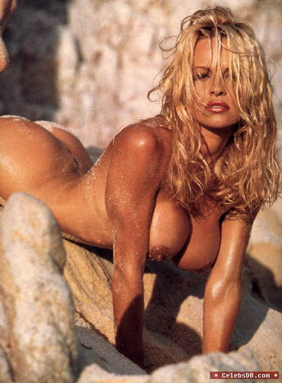 You thanks Pamela anderson sex tape rapidshare think, that