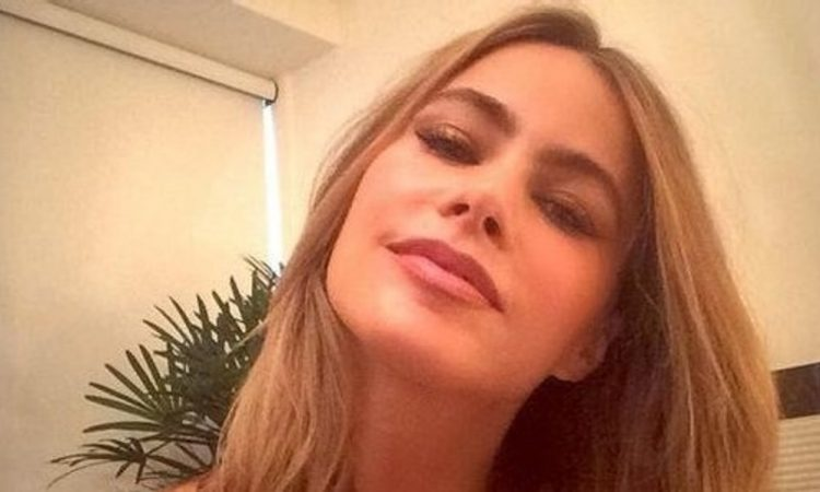 celeb sofia vergara selfie