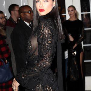Adriana Lima | CelebrityRevealer 19
